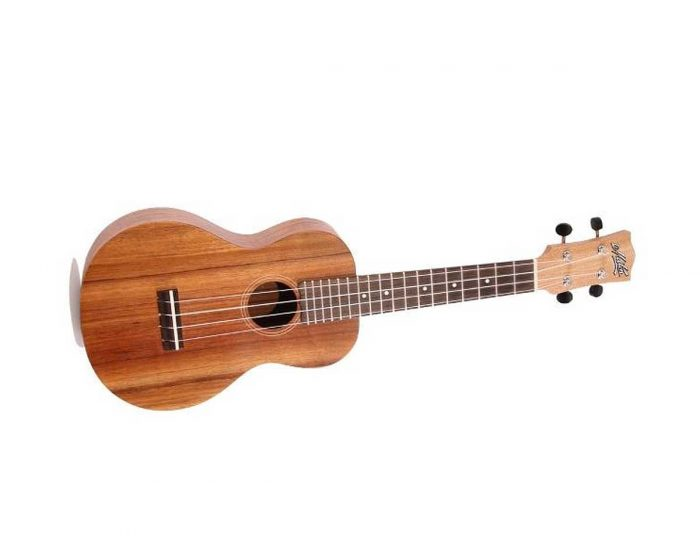 ukulele con e 700x558 - Maton Ukulele Tenor With Pick Up & Amp; Case