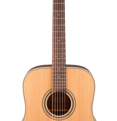 TGD20NS 386x400 - Takamine G20 Series Dreadnought Acoustic Guitar (TGD20NS)