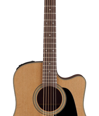 TP1DC 342x400 - Takamine Pro Series 1 Dreadnought AC/EL Guitar with Cutaway (TP1DC)