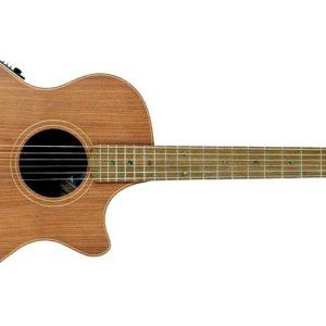 Cole Clark Angel 2 Redwood Blackwood Acoustic Electric Guitar 300x300 - Cole Clark Angel 2 Redwood-Blackwood Acoustic-Electric Guitar