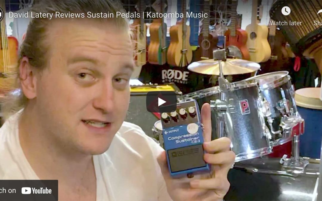David Laverty Reviews Sustain Pedals