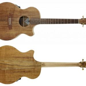 TL2EC FULL NEW 300x300 - Cole Clark - TL2EC-BLBL Solid Blackwood Acoustic Guitar