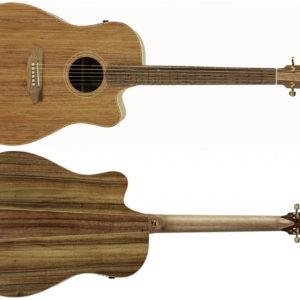 fl2ec blbl side NEW1 300x300 - Cole Clark - FL2EC-BLBL Acoustic Guitar